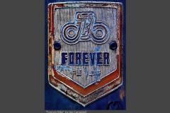 FOREVER-BIKE