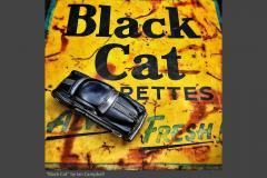 2_BLACK-CAT